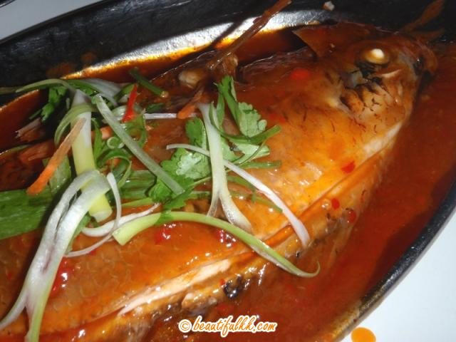Steamed Talapia with Spicy Sauce