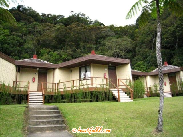 The Hill Lodges