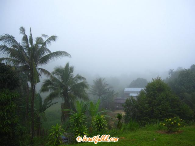 Early Morning Mist At Sonsogon Magandai