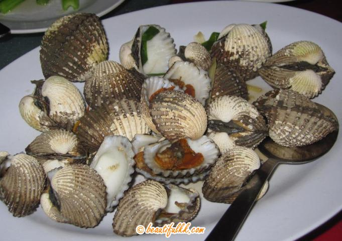 Steamed Common Clam