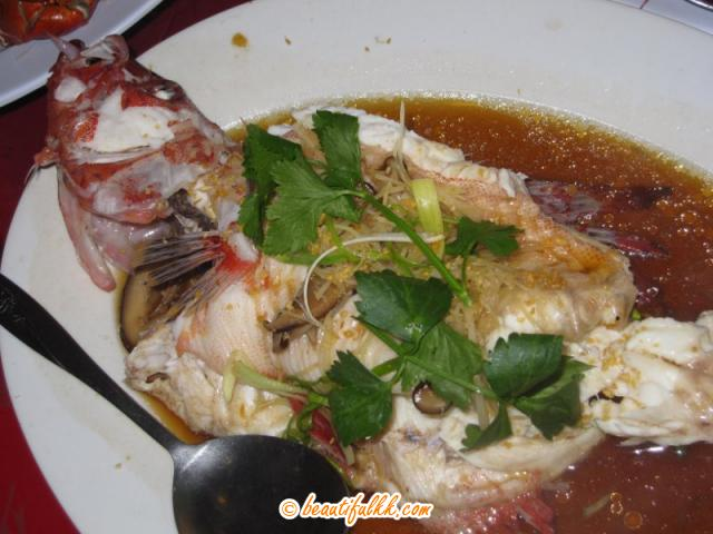 Steamed Red Fish With Black Sauce